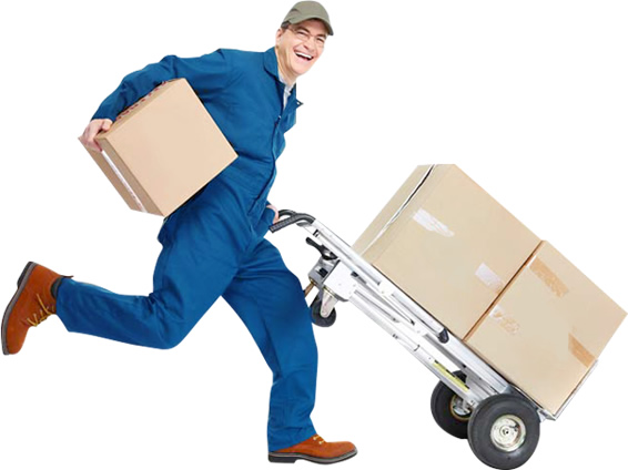 Warehousing Services in Delhi
